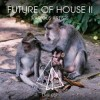 future house 2 261114 EMmag
